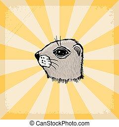 hamster, fundo