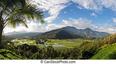 hanalei tal, von, princeville, übersehen, kauai
