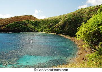 Hanauma Bay Reef beach Honolulu Hawaii