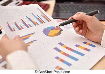 hand, analysieren, einkommen, schaubilder, und, tabellen