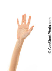 hand and arm of a young woman