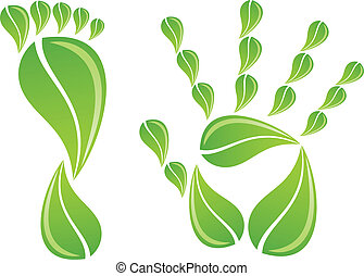 hand and foot with leaves, vector - hand and foot with green...
