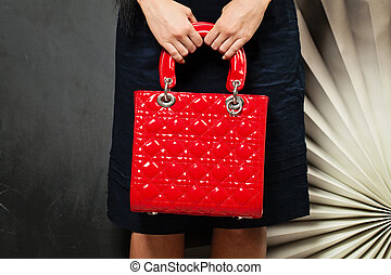 Hand Bag. Woman with Red Handbag on Background