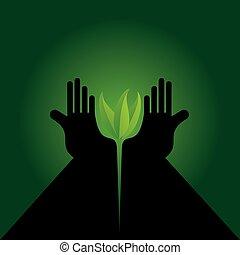 hand caring