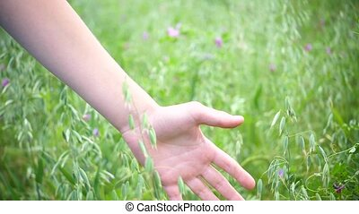 hand close-up touches the ears. ears swaying in the wind -...