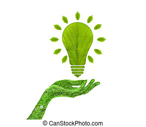 Green leaf light bulb in his hand