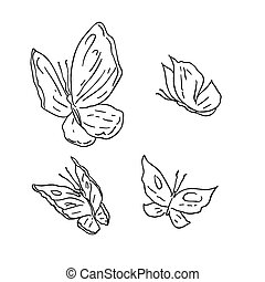 Hand draw grunge vector butterfly on white background