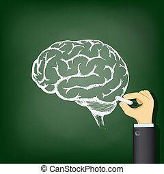 Hand drawing a chalk human brain.
