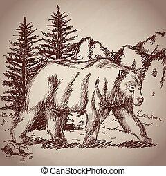 hand drawing bear walk vintage landscape