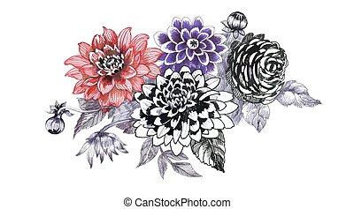 Hand drawing chrysanthemum flowers sketch.