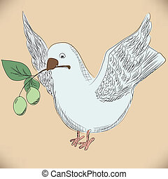 hand drawing dove with an olive