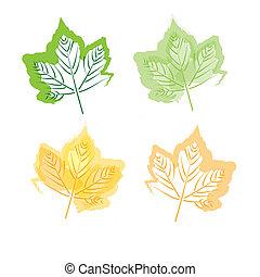 Hand drawing leaf set
