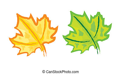 Hand drawing Maple leaf