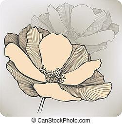 hand-drawing., résumé, vecteur, fleur, illustration.