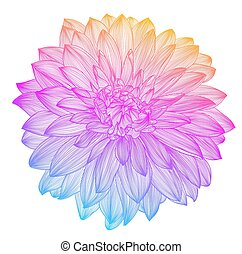 hand drawing rainbow flower, vector