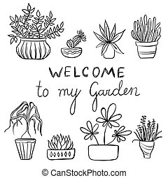 Hand drawing set of pot plants, gardening illustration with text