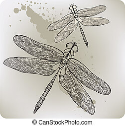 hand-drawing., voando, vec, libélula