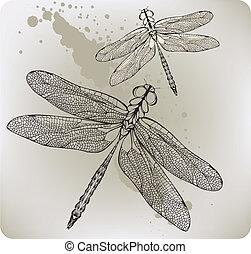 hand-drawing., vuelo, vec, libélula