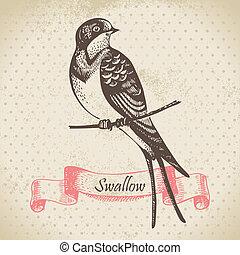 hand-drawn, イラスト, ツバメ, 鳥