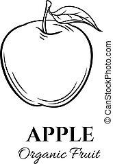 Hand drawn apple icon.