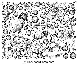 Hand Drawn Background of Allophylus Edulis and Pitanga...