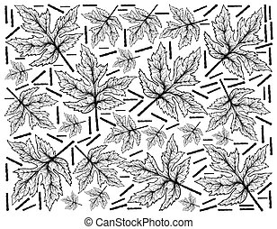 Hand Drawn Background of Autumn Maple Leaves - Autumn Tree,...