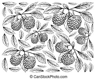 Hand Drawn Background of Blue Raspberry Fruits