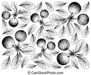 Hand Drawn Background of Fresh Bog Bilberries - Berry Fruit,...