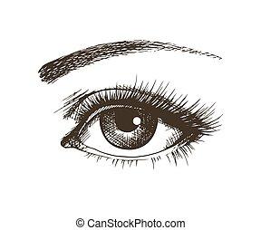 Hand-drawn beautiful female eye