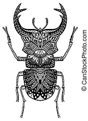 hand drawn beetle