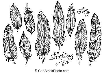 Hand drawn bird feathers closeup big set isolated on white...