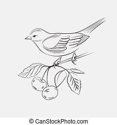 Hand drawn bird on a branch