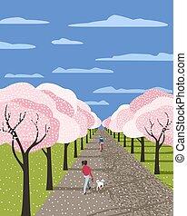 Hand drawn blooming sakura alley
