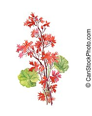 Hand drawn branch of red flowers isolated on white background