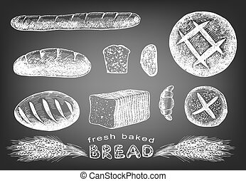 Hand drawn bread set