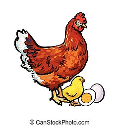Hand drawn brown hen, little chicken and peeled, boiled egg