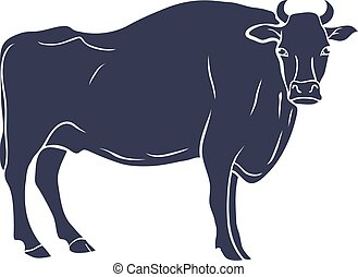 Hand Drawn Bull Illustration isolated on White Background. Vector
