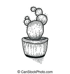 Hand drawn cactus. Doodle florals in pots. Vector botanical set with cute house interior plants