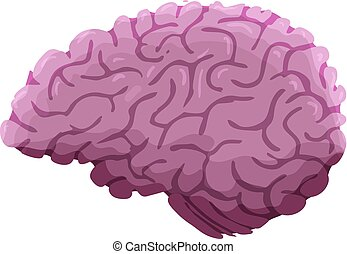 Hand Drawn Cartoon Brain Isolated on White Background. Vector