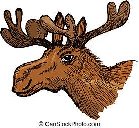 moose - hand drawn, cartoon, sketch illustration of moose