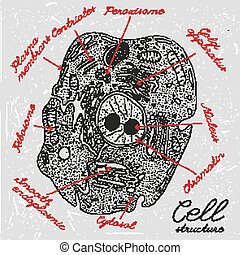Hand Drawn Cell - Beautiful handdrawn cell drawing in dark...