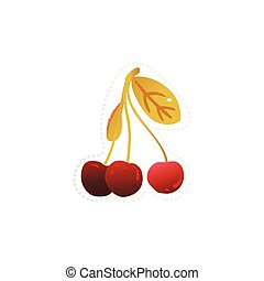 Hand drawn cherry tree branch with three berries isolated on white background