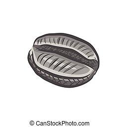 hand drawn coffee bean logo. engraving texture. vector ...