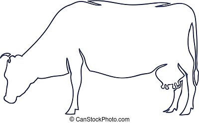 Hand Drawn Cow Isolated on White background. Vector