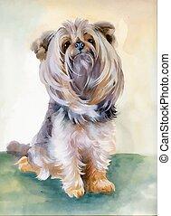 Hand drawn cute yorkshire terrier dog - Hand drawn...