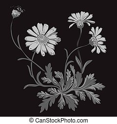 Hand drawn Dandelion flowers isolated on black background. Drawi