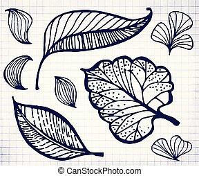 Hand drawn doodle leaf illustration on notebook sheet