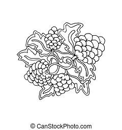 Hand drawn doodle outline grape fruit magic line art element with floral ornament.