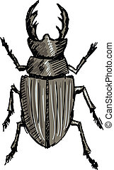 hand drawn, doodle, sketch illustration of stag-beetle