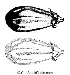 Hand drawn eggplant isolated on white